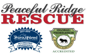 proud supporter of peaceful ridge rescue